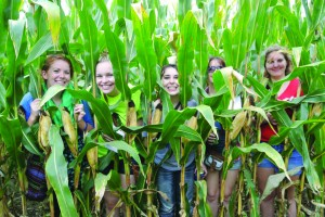 Loras College tudents rode trolleys to Schuster's Pumpkin Patch to greet autumn by participating in a corn maze, pumpkin cannon shooting and other fall-related activities.